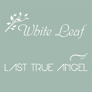 White Leaf /  Last True Angel