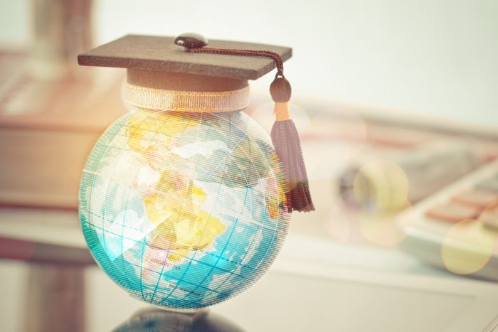 How resilient is the international schools market in times of crises?