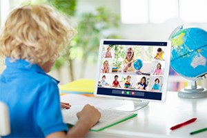 Wellbeing and Socialization in Online Schooling