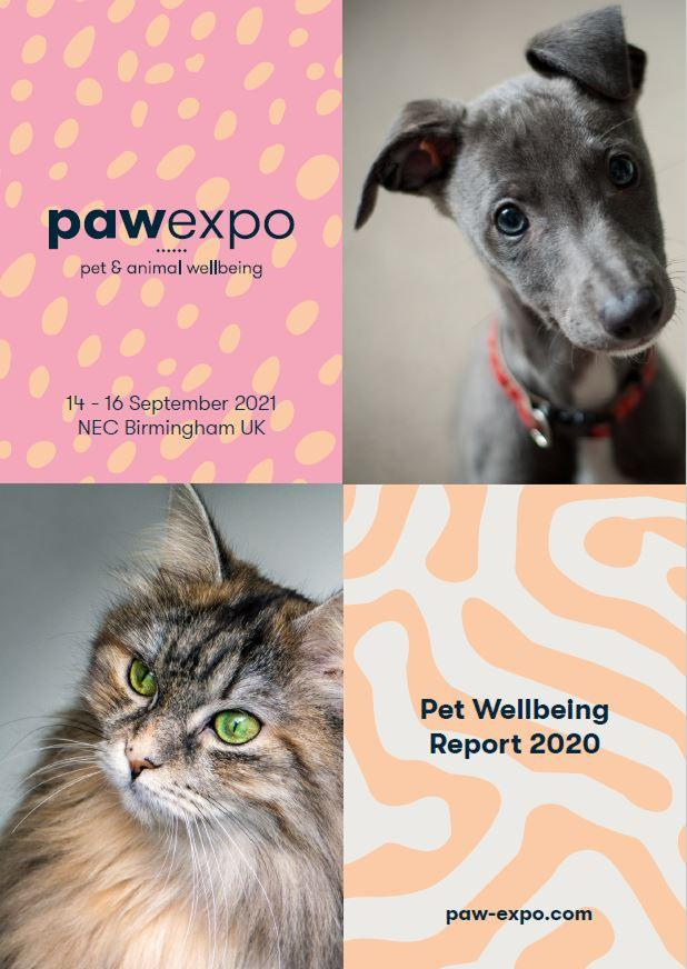 wellbeing report