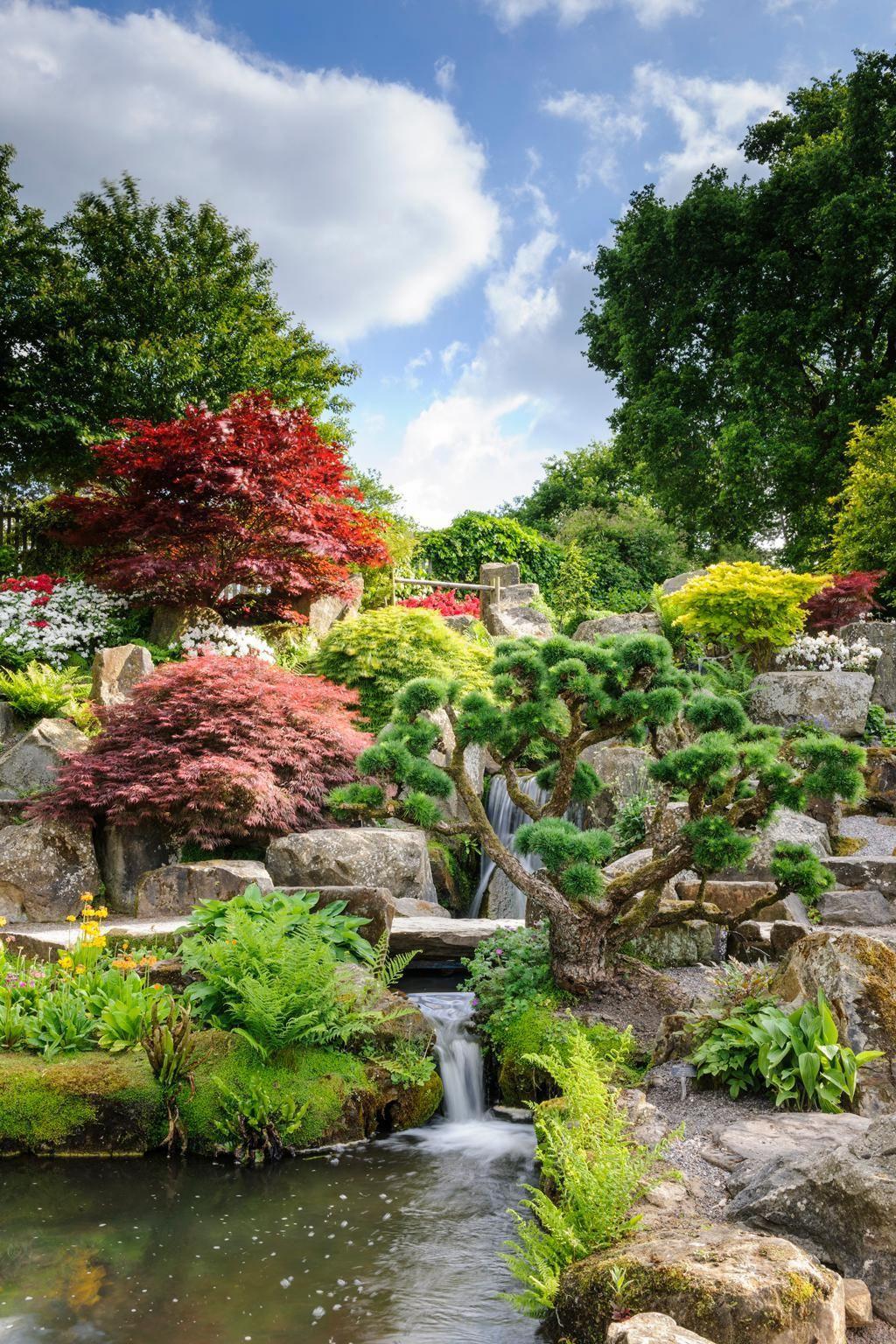 RHS Garden Wisley – Rock Garden. Jason Ingram/RHS
