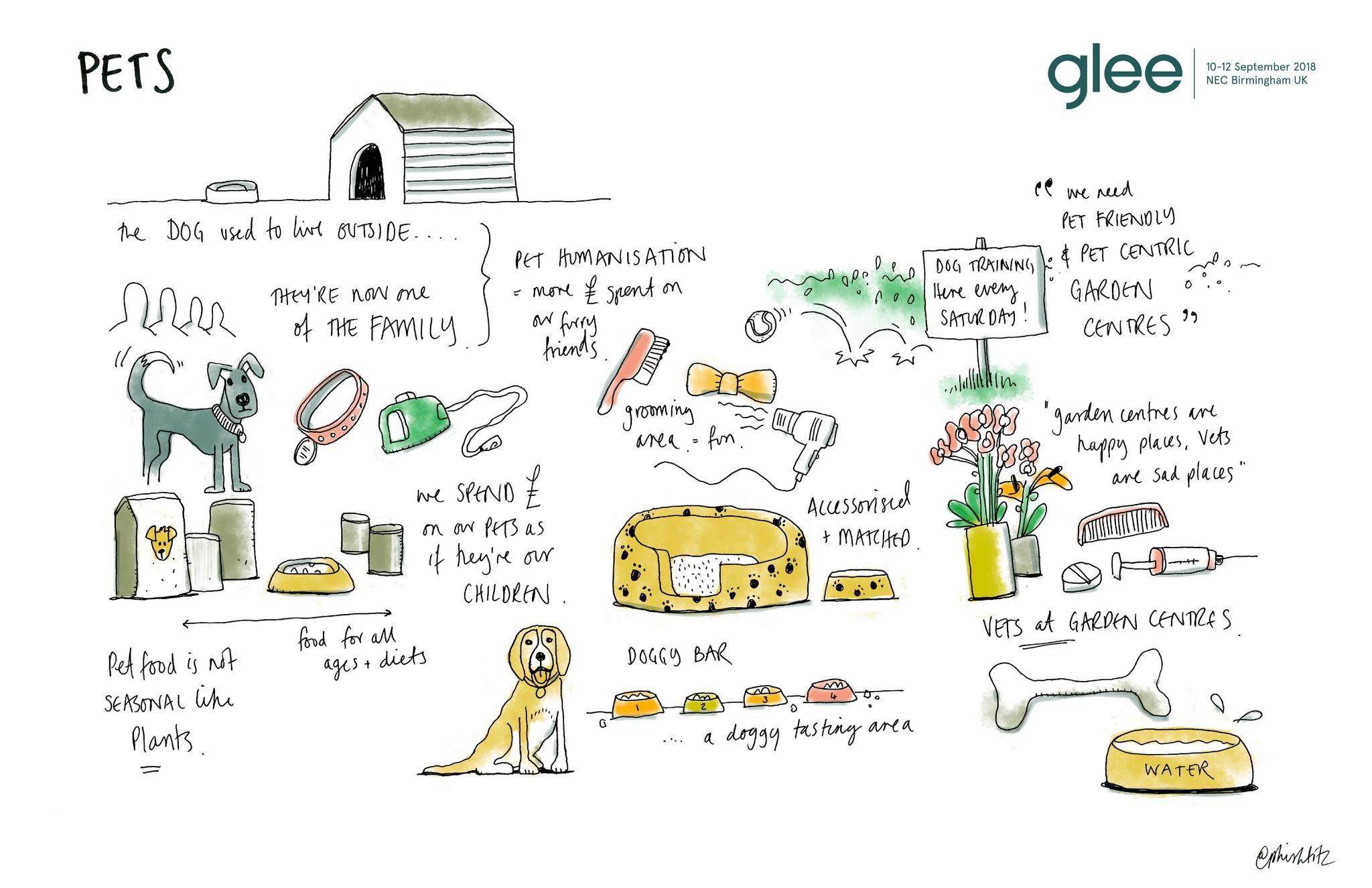 pets at glee sketchnotes