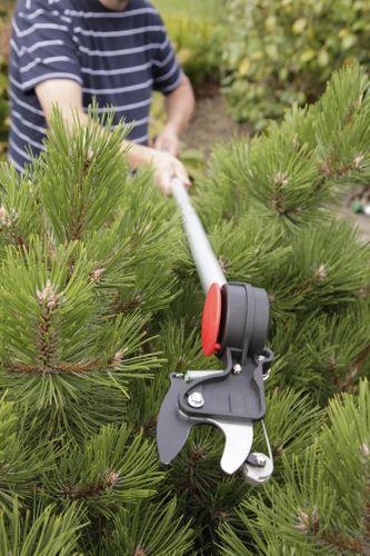 Spear & Jackson Razorsharp Cutting Tools, reaching new heights in garden pruning