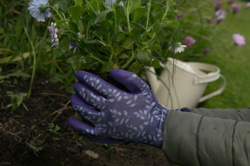 Innovative gardening gloves for all seasons from Town & Country