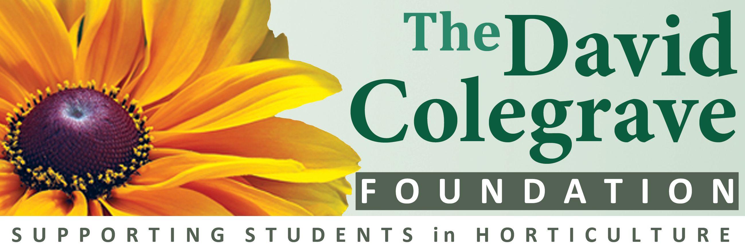 David Colegrave Foundation - NB91