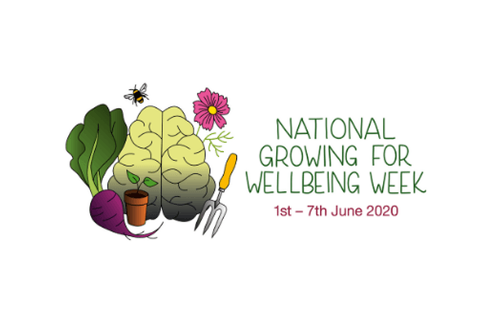 Growing produce and mental wellbeing