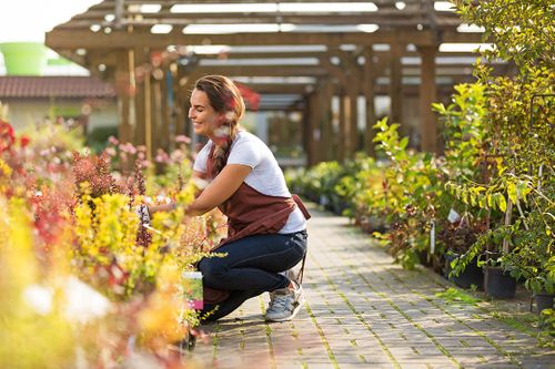 What gardeners are looking for and how garden centres can help