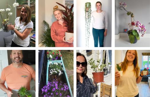Meet the Glee team (and their houseplants)