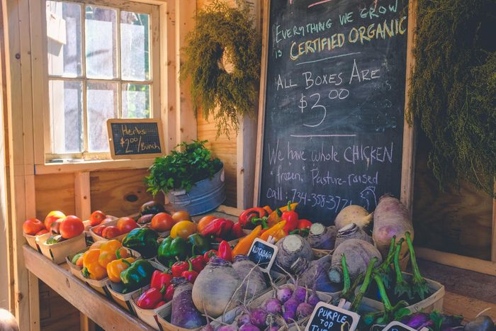 Vegans and organic gardeners drive demand for natural garden products as market for planet-friendly gardening gets set for rapid growth
