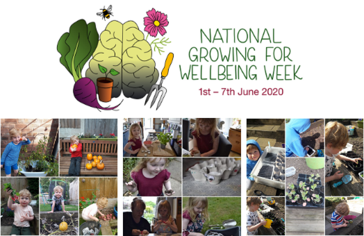National Growing for Wellbeing Week Success