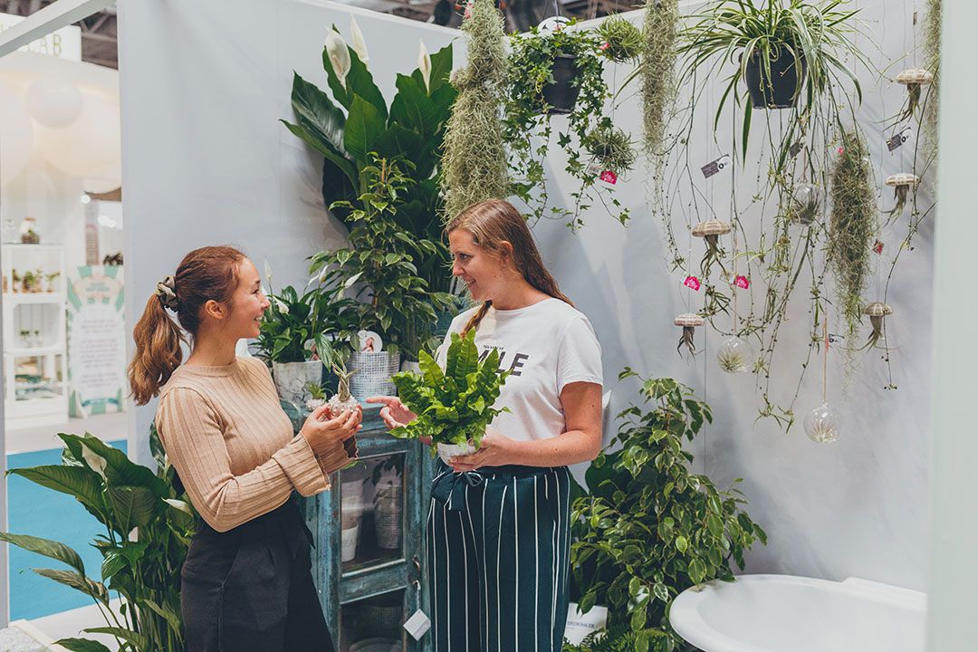 Top reasons why plant buyers should visit the Glee Green Heart in 2021