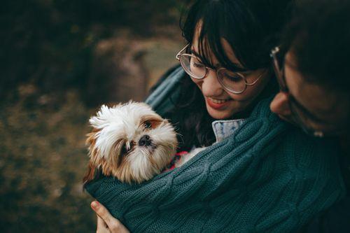 Millennials grow the pet market one post at a time