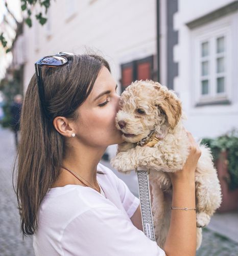 The rise of the pet parent