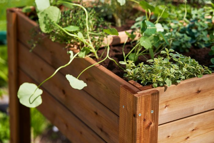 Four section vegetable bed and shelf 160L