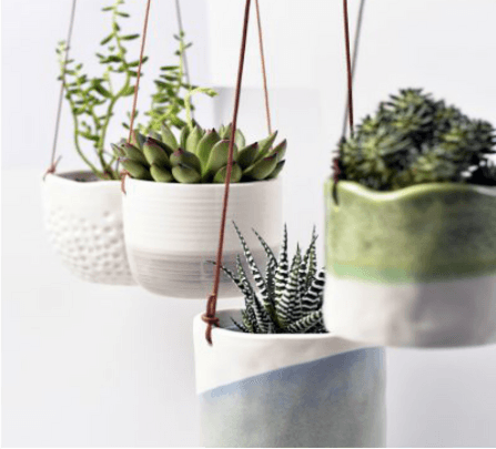 The top 2019 gardening trends from Glee