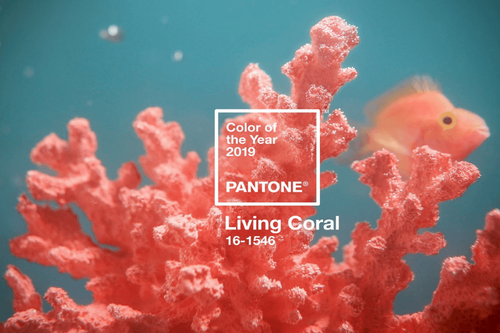 Newsletter #6: Living Coral on runways and in wardrobes