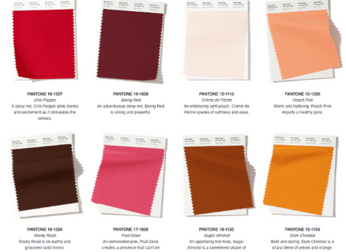 Newsletter #6: The Pantone colour forecasting process