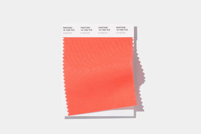 All about Living Coral, Pantone's Colour of the Year, with Abigail Bruce