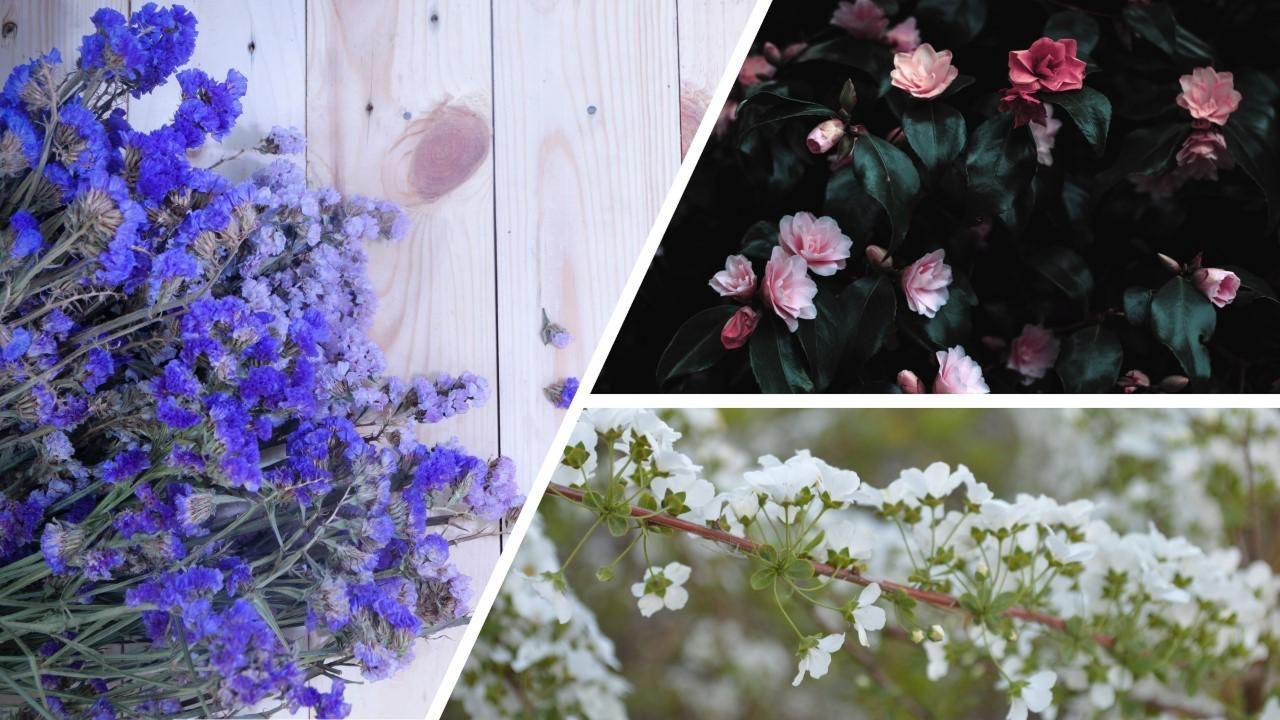 floral trends 2020