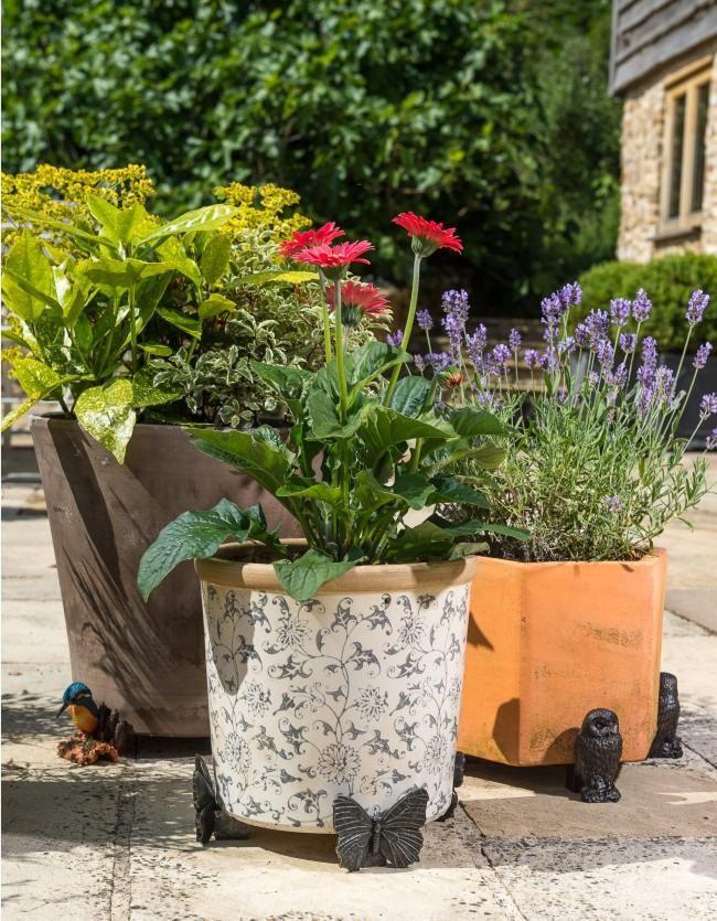 jardinopia-lifestyle-product-images