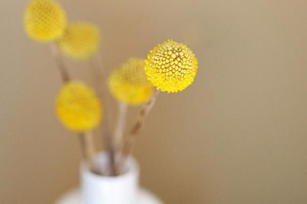 Trends Decoded: Yellow Art