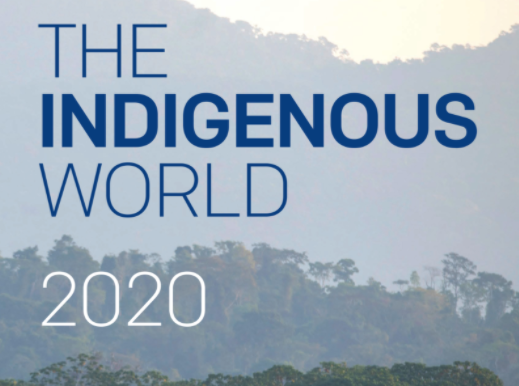 The Indigenous World 2021 Report