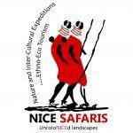 Nice Safaris