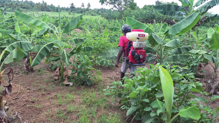 SynBionic Ayudo Organic Crop Treatment Solutions