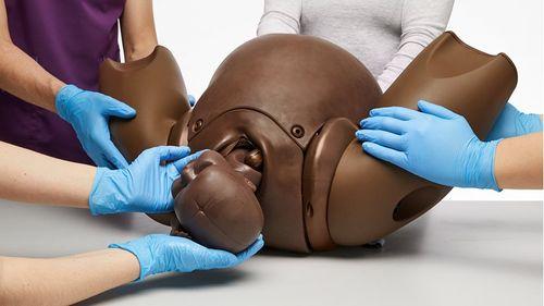 PROMPT Flex Birthing Simulator