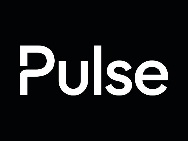 Pulse Global Services Limted
