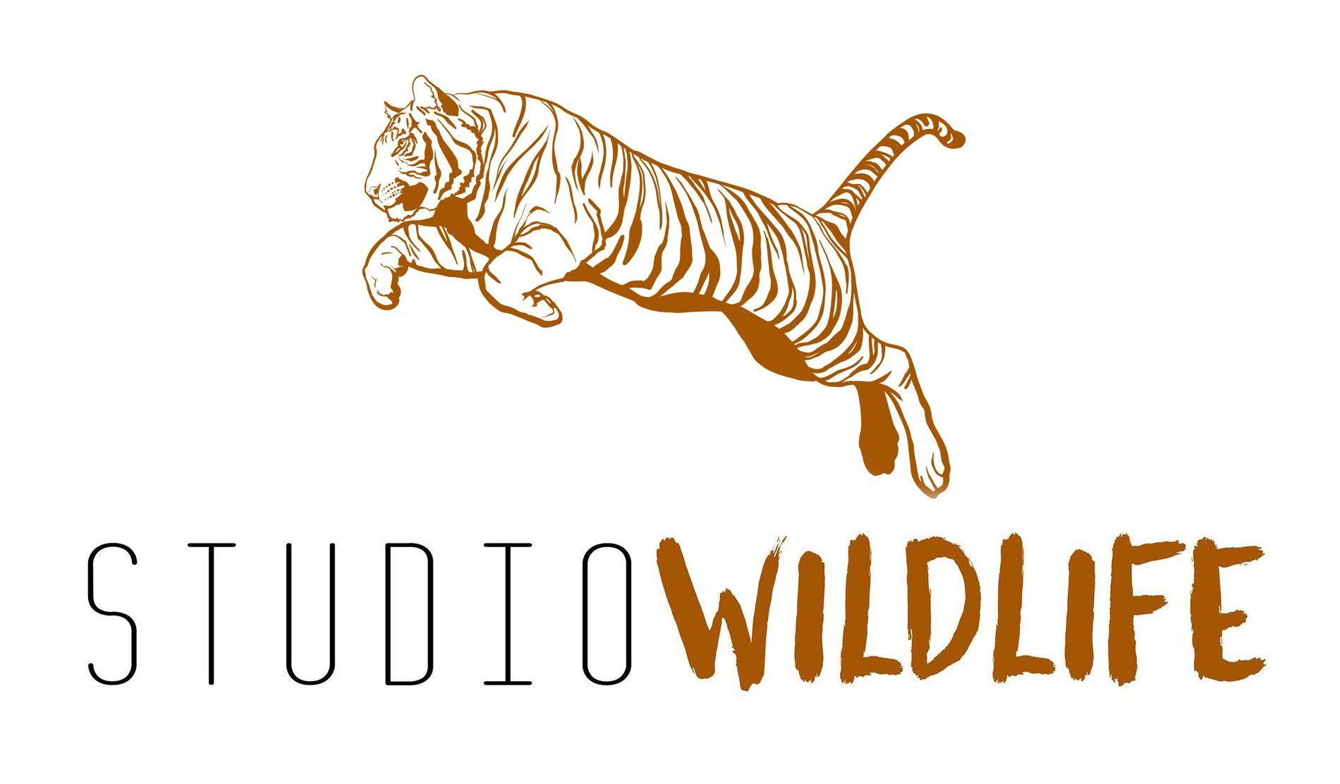Studio Wildlife