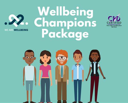 Creating Nightlife Wellbeing Champions