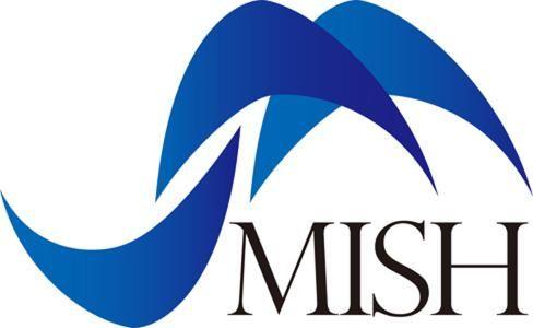MISH International Co. Ltd.