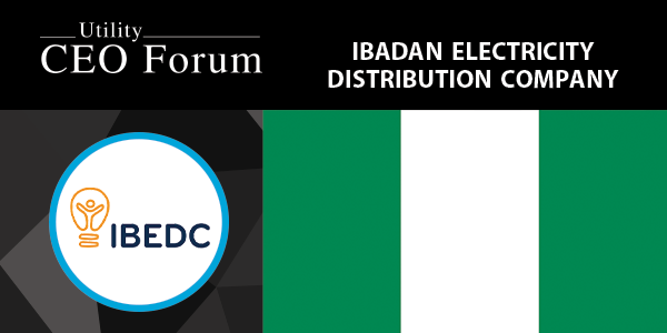 Ibadan Electricity Distribution Company