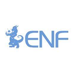 ENF Solar