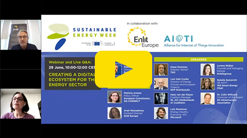 """Hydrogen's Role in the EU Climate-Neutral 2050 Goal"""