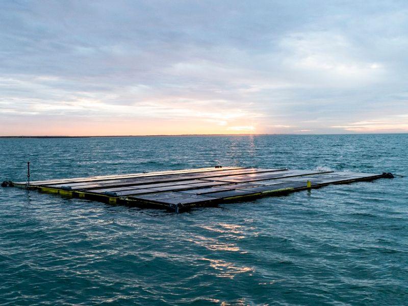 Floating solar powers seaweed farming