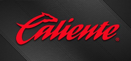 Betsoft Gaming Makes Big Strides into Mexico with Market Leader Caliente.mx