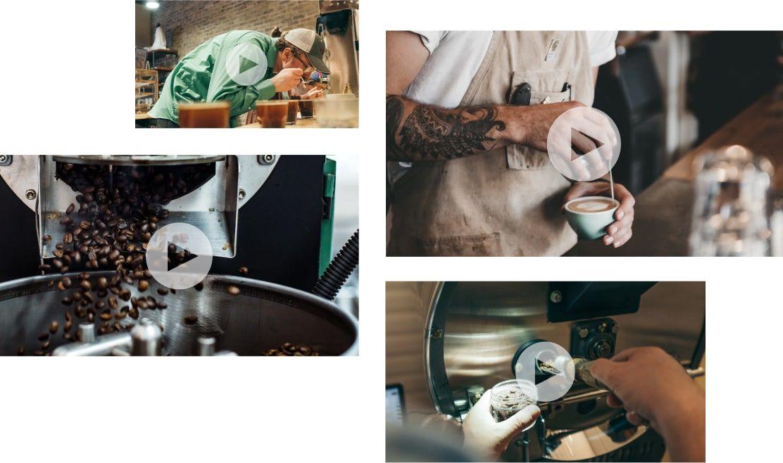 Specialty coffee education