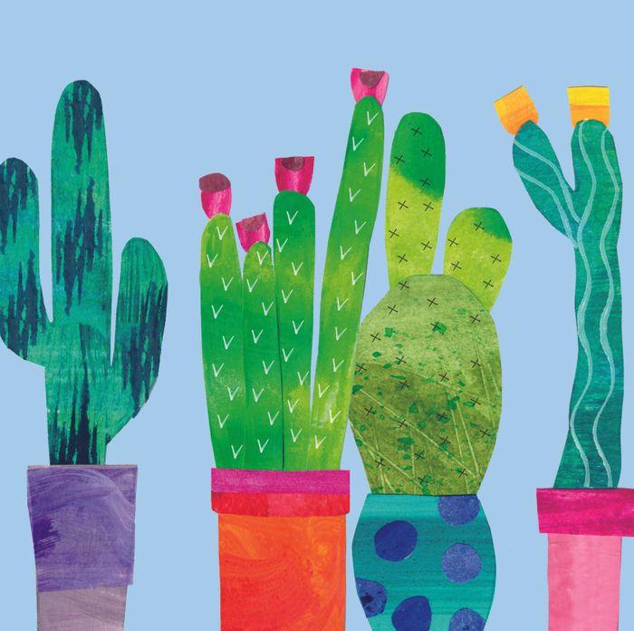 Gardens: Cactus One of 6 Designs