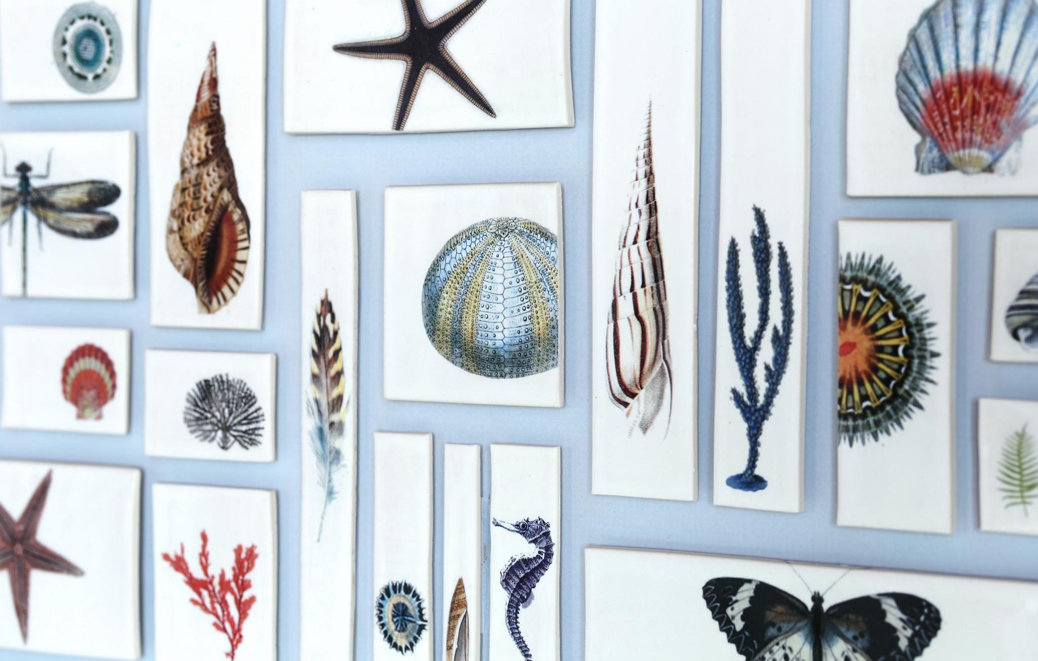 Caroline Barnes Ceramics