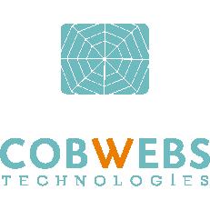 Cobwebs Technologies Ltd