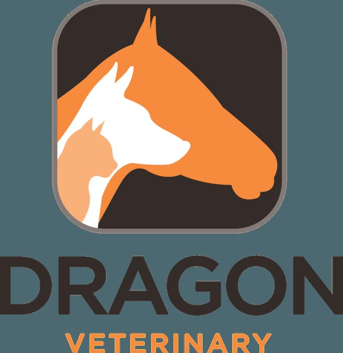 Dragon Veterinary.com