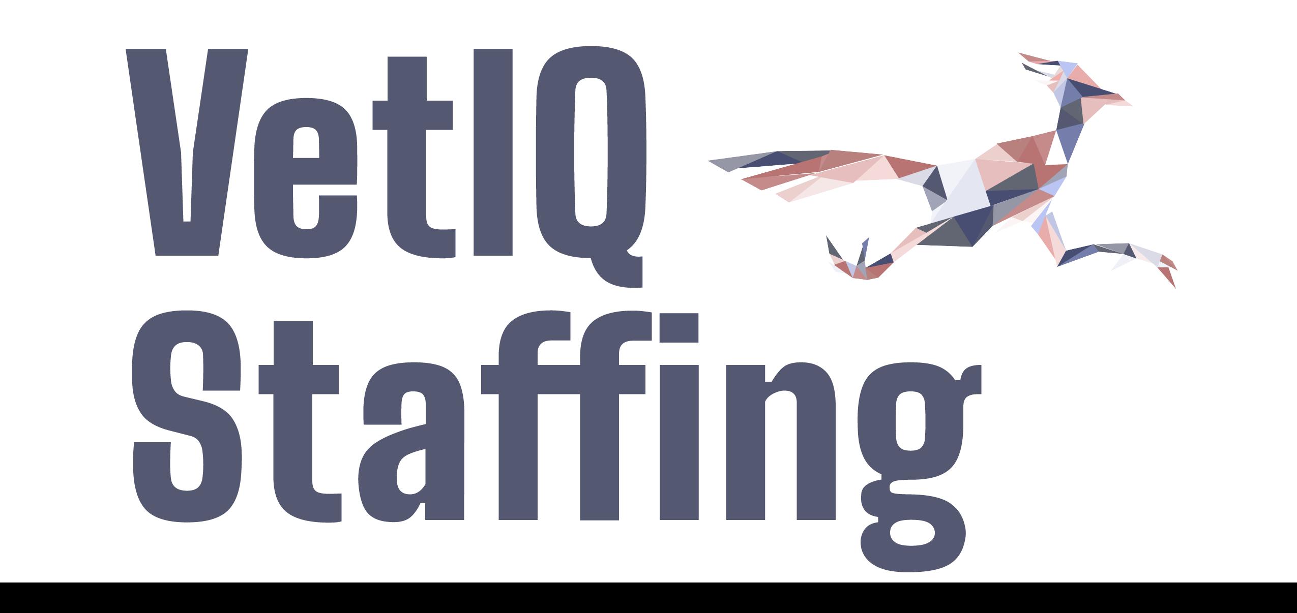 Vetiq Staffing
