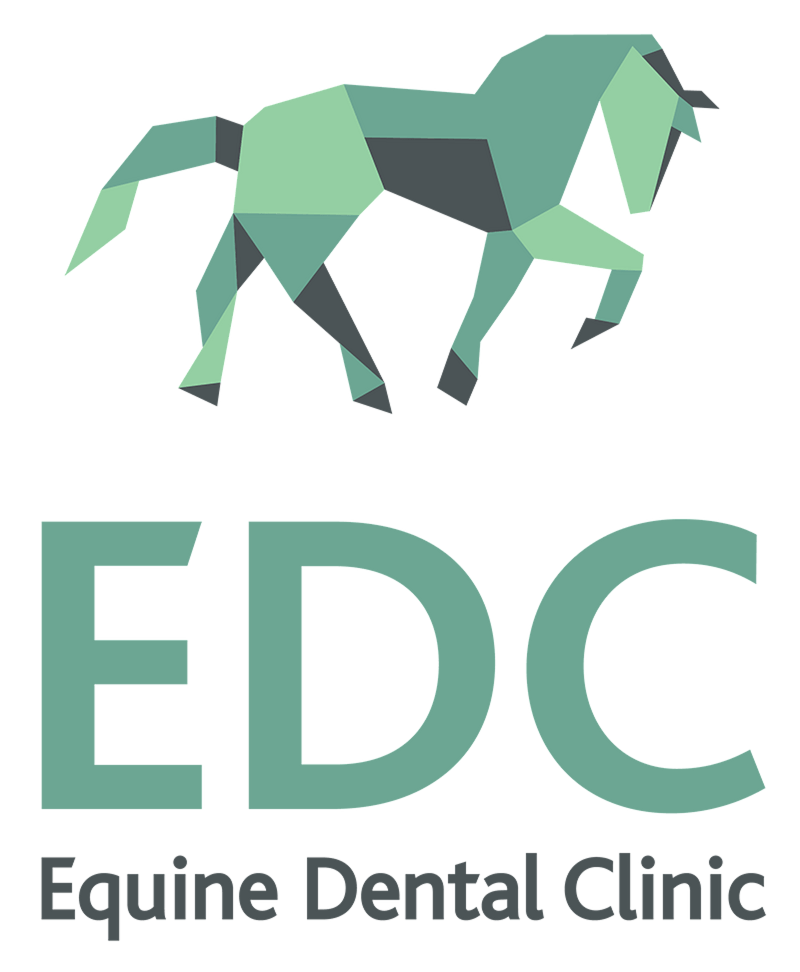 The Equine Dental Clinic Ltd