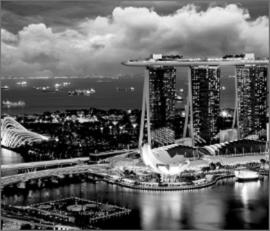 Singapore Vet