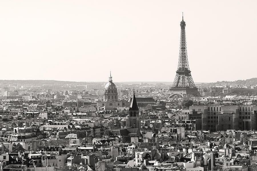 France Vet