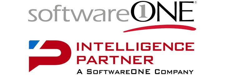 Intelligence Partner