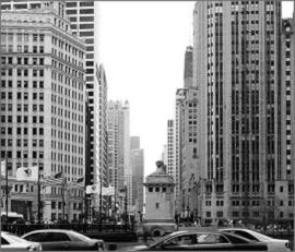 Chicago Vet