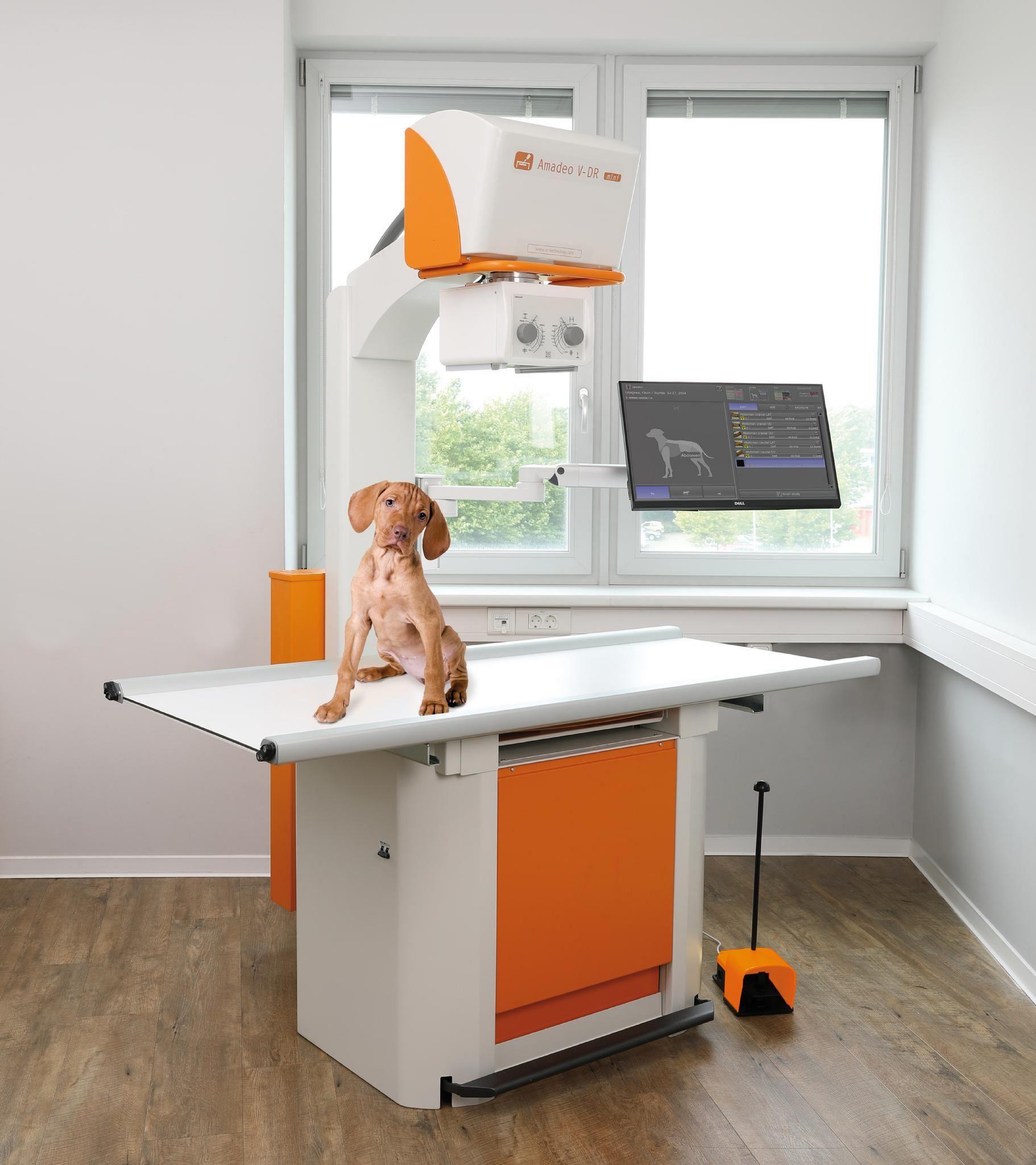 Röntgen-Komplettlösung für Kleintierpraxen: Hochfrequenz aus der Steckdose